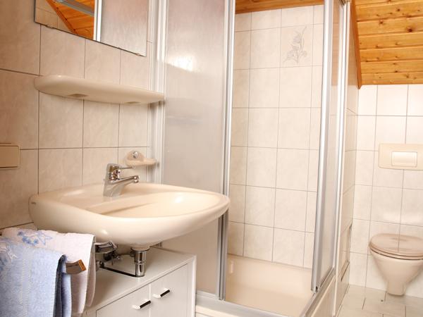 Badezimmer mit Dusche und WC, Wohnung Typ B