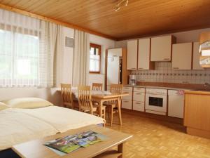 Auf dem Bild sieht man das Wohnzimmer der Wohnung D für 2 Personen mit ausziehbarer Couch.