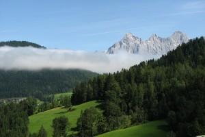 Man sieht ein Foto mit Berg, Wald und Wiesen. Es ist ein schönr Tag, in der Ferne ist Nebel zu erkennen.